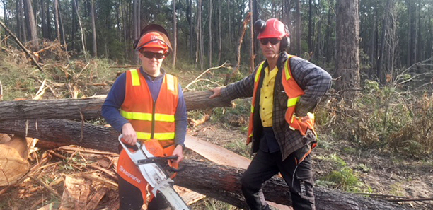East-Gippsland-Timber-Trainer-Vies-for-Victorian-Training-Award